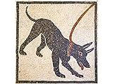 Kit de mosaico romano Cave Canem. 5000 teselas cúbicas de 5mm. + herramientas. Tamaño terminado:...