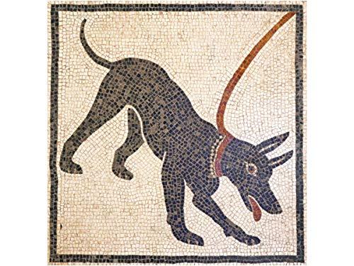 Kit de mosaico romano Cave Canem. 5000 teselas cúbicas de 5mm. + herramientas. Tamaño terminado: 38x38cm.