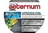 Zoom IMG-2 aeternum titanium induction casseruola con