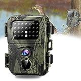 Camara Caza Nocturna, Mini Camara De Caza 20mp Fototrampeo 1080p Full HD con Detector De Movimiento Nocturna Infrared Camara Impermeable para Animales Salvajes para Seguridad En El Hogar Monitoreo