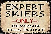 ポイントスヌードレトロサインヴィンテージ金属ポスタープラーク警告サインアイアンアート壁掛け壁だけでなく、専門家のスキーヤー