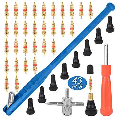 43 Pcs Reifenventilentferner Ventilwerkzeuge Set, Reifenreparatur Werkzeug, Ventilinstallationswerkzeug + Einkopf Ventil Entferner + Multifunktion Ventil Werkzeug + 30×Ventilkern + 10×TR412 Ventile