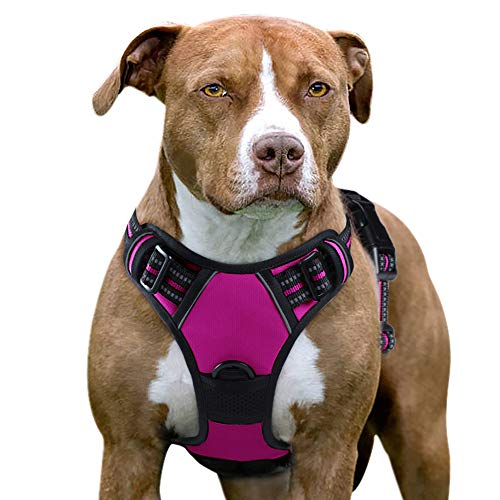 Eagloo Dog Harness No Pull, Walking Pet Harness with 2 Metal Rings and Handle Adjustable Reflective Breathable Oxford Soft Vest Easy Control Front Clip Harness Outdoor for X-Large Dogs Rose Red