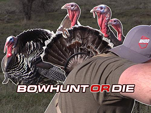 Run & Gun Turkey Hunting With A Trad Bow