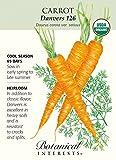 'Danvers 126' Carrot...image