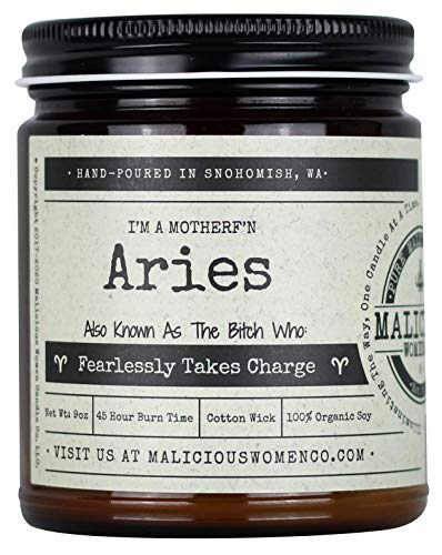 Malicious Women Candle Co - Aries The Zodiac Bitch - Fearlessly Takes Charge, A Hot Mess (Red Hot Cinnamon), All-Natural Organic Soy Candle, 9 oz