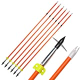AMEYXGS 6/12pcs Archery Fiberglass Bowfishing Arrow Bow Fishing Arrows with Broadheads and Safty Slides for Compound and Bow Recurve Bow Fishing Hunting (Orange, 6 PCS)