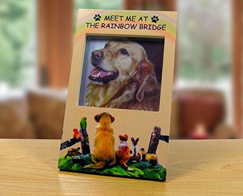 BANBERRY DESIGNS Rainbow Bridge Pet Memorial -...
