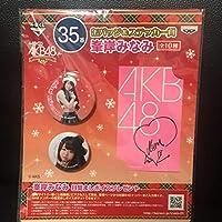 AKB48峯岸みなみの缶バッジ&ステッカー賞