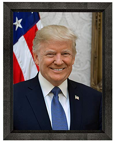 Donald J. Trump Photograph in a Black Beveled Frame - Historical Artwork from 2017 - US President Portrait - (16
