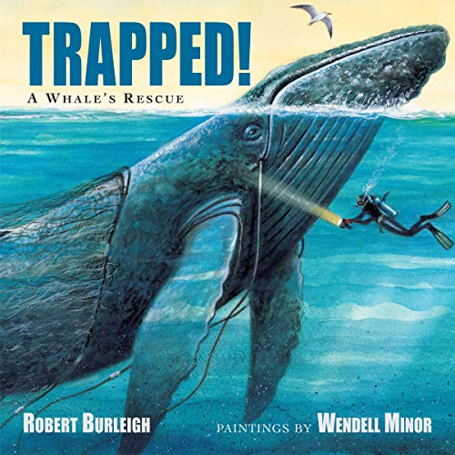 Trapped!: A Whale's Rescue cover art
