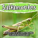 Saltamontes: ¡Descubre fotos de saltamontes para niños! Un libro de insectos...