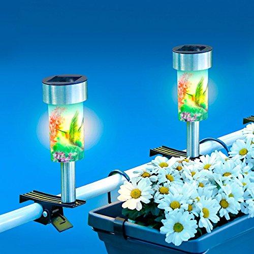 Unbekannt TRI Solar-Kippleuchte, Solarleuchte Solarlampe Licht Gartenleuchte Balkonleuchte mit Klippfunktion, Kolibri-Motiv, Ø 6 x 17 cm