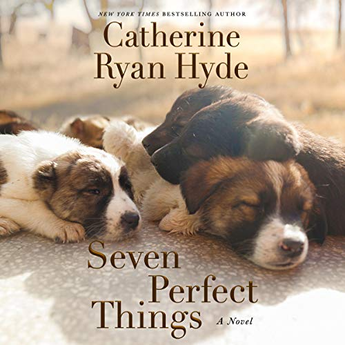 Seven Perfect Things Audiobook By Catherine Ryan Hyde cover art
