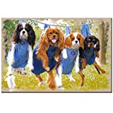 DIY en bois puzzle geant bois adulte Chien 1000 pieces  Cavalier King Charles Spaniel Dogs animal drôle