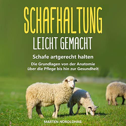 Schafhaltung leicht gemacht: Schafe artgerecht halten Titelbild