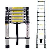 LARS360 Teleskopleiter Multifunktionsleiter Ausziehleiter Anlegeleiter Mehrzweckleitern Hochwertigem aluminium Leiter (3.2m)