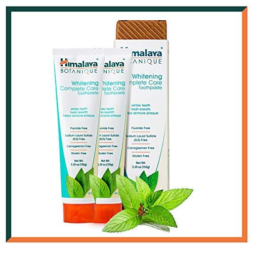 Himalaya Botanique Toothpaste - Natürliche Zahnpasta ohne Fluorid, SLS, Gluten & Carrageenan - Entfernt Plaque, Mundgeruch, verhindert Karies und Zahnfleischbluten (WHITENING + Mint, 2-Pack SAVER)