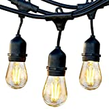 Brightech Ambience Pro Outdoor String Lights with 15 Hanging...