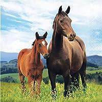 クラブパック 192グリーンとブラウンの馬とポニー 2層ドリンクナプキン 12.75インチ