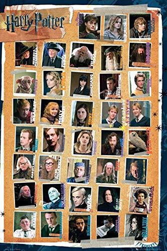 Harry Potter Characters Unisex Póster Multicolor, Papel, 61 x 91,5 cm