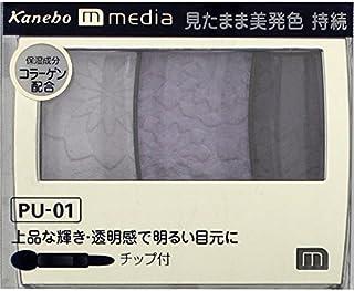 カネボウ メディア(media)グラデカラーアイシャドウ カラー:PU-01