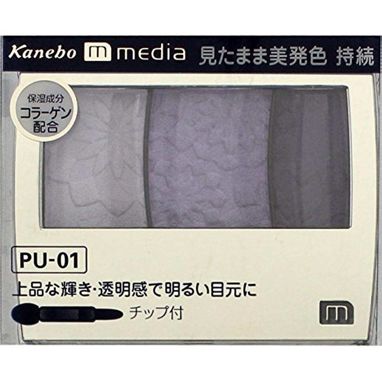 新鮮な借りる薬を飲むカネボウ メディア(media)グラデカラーアイシャドウ カラー:PU-01