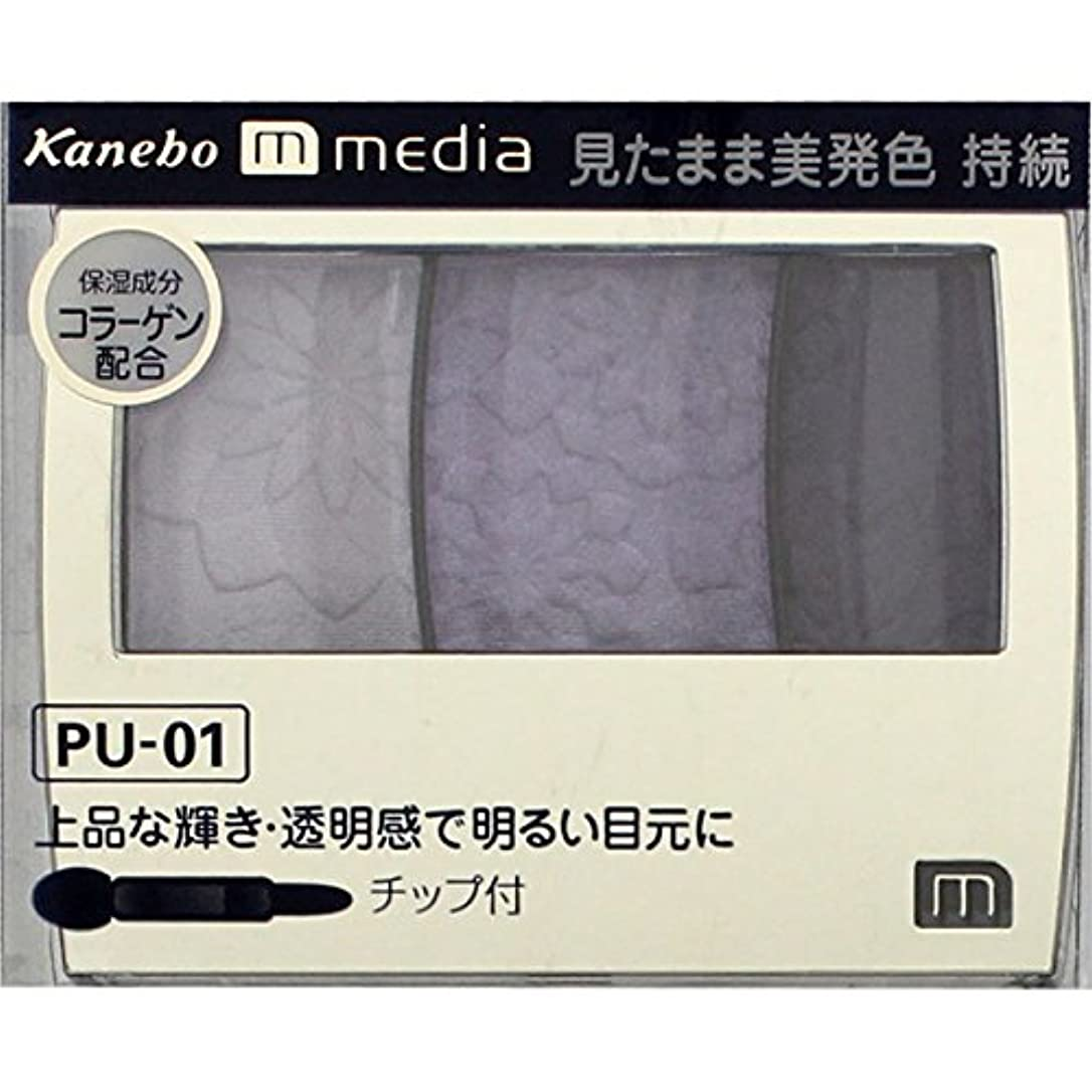 アソシエイトパッチ通知するカネボウ メディア(media)グラデカラーアイシャドウ カラー:PU-01