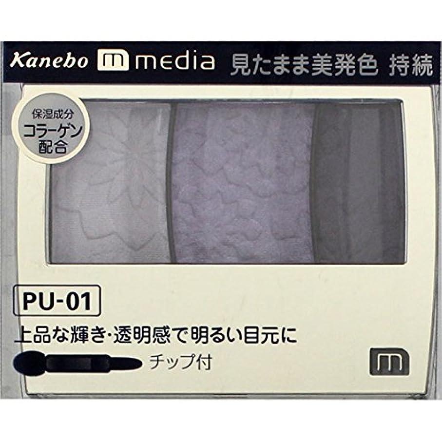 節約するライオネルグリーンストリート年金カネボウ メディア(media)グラデカラーアイシャドウ カラー:PU-01