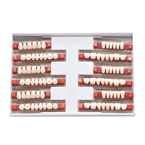 84 Pcs Dental Synthetic Resin Tooth Denture 3 Sets False Teeth 23 A2 Upper...