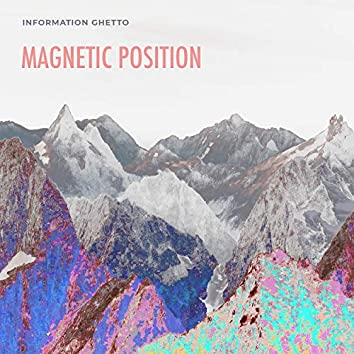 Magnetic Position
