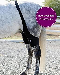 Ice Horse Pair of Stifle Wraps for Equine Therapy - Comes with 4 Ice Packs