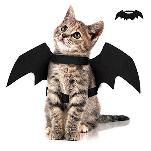 Flyglobal Costume Chauve-Souris pour Chat Chien Chic Ailes de Chauve-Souris pour Déguisement de Chat Chien Halloween Noël Créatif pour Animal de Compagnie Vampire Halloween Costume-Bat Wings Chat