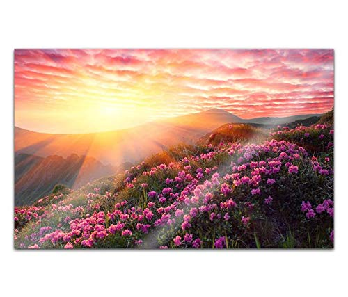 Acrylglasbilder 80x50cm Frühling Berg mit Blumen Himmel Wolken Sonne Acryl Bilder Acrylbild Acrylglas Wand Bild 14H186