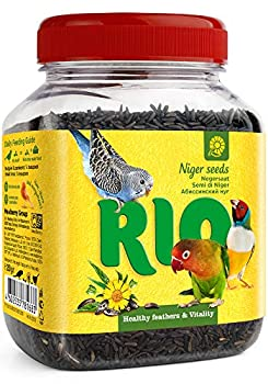 RIO Niger Seed Treat for All Birds 1 Paquet (1 x 0,25 kg)