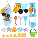 Auney Beach Toys Set for Kids 20 PCS - Sand Water Wheel, Castle Molds, Truck Bucket, Beach Shovels Rakes Tool Kit, Sea Animal Molds, Watering Can, with Mesh Backpack Sandbox