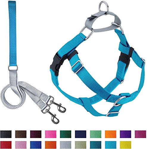 2 Hounds Design Freedom No Pull Dog Harness with Leash Adjustable Gentle Comfortable Control for Easy Dog Walking for Small Medium and Large Dogs Made in USA