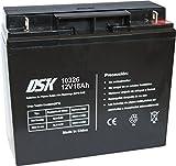 DSK 10326 - Batería de Plomo AGM Recargable y Sellada de 12V 18Ah. Ideal para Sistemas de Alarma de Seguridad, Iluminación de Emergencia, Equipos Eléctricos OEM, Sistemas SAI, Movilidad Eléctrica