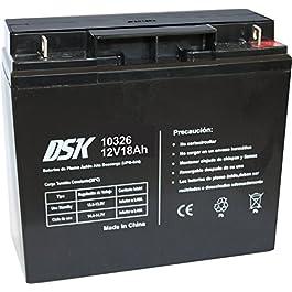 DSK 10326–Batterie Plomb Acide 12V 18Ah, Noir