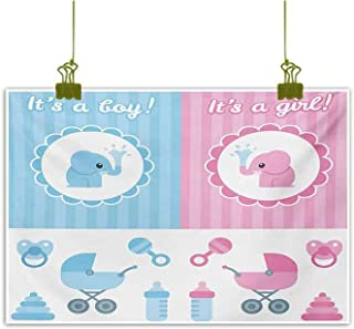 Mannwarehouse Gender Reveal Wall Art Decor Poster Painting Elephants Girl Boy Kids Newborn Composition with Baby Shower Icons Decorations Home Decor 24