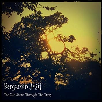 The Sun Shone Through the Trees