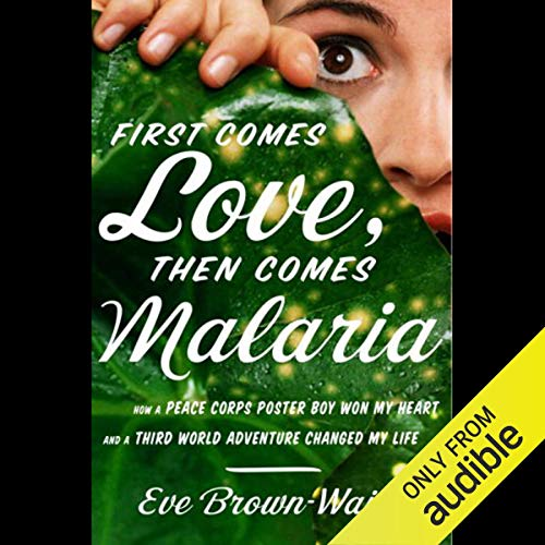 First Comes Love, Then Comes Malaria cover art