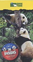 Meet the Pandas: Washington's New Power Couple [VHS]