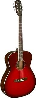 James Neligan 6 String Acoustic Guitar (BES-A TRB)