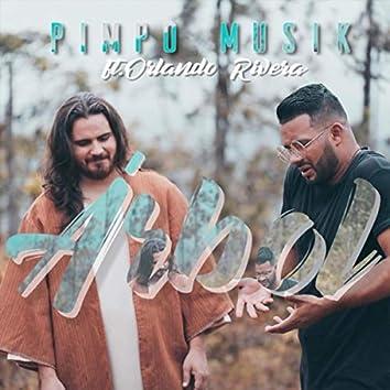 Árbol (feat. Orlando Rivera)