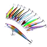 10 Crankbaits for Bass Hard Bait Minnow VIB Lure with Treble Hooks Wobbler Life-Like Bait 3D Eyes Vibe Floating Lure Fishing Trout Walleye Pike Perch