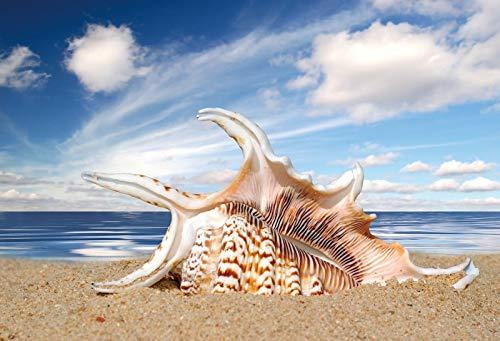 Verano Tropical Mar Playa Arena Estrella de mar Concha Coral Palmas Árbol Niño Vacaciones Fotografía Telón de Fondo Estudio fotográfico A4 10x7ft / 3x2.2m