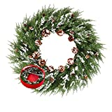 Frdsomar Large Christmas Wreath with Storage Container for Front Door, 26 inch Artificial Wreath with Real Snowy Pinecone, Winter Wreaths for Indoor, Outdoor Decor, Windows, Wall, Fireplace Decoration