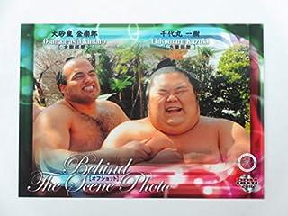 BBM2016大相撲カード■レギュラーカード■No.79大砂嵐、千代丸