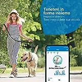 Recensione 2 Tractive Localizzatore GPS Cani 2021